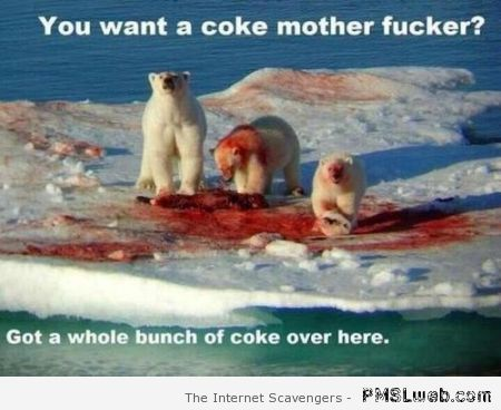 Coca cola polar bear humor at PMSLweb.com