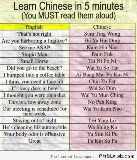 Learn Chinese in 5 min – LMAO pictures at PMSLweb.com