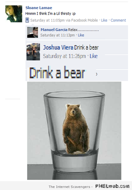 Drink a bear at PMSLweb.com