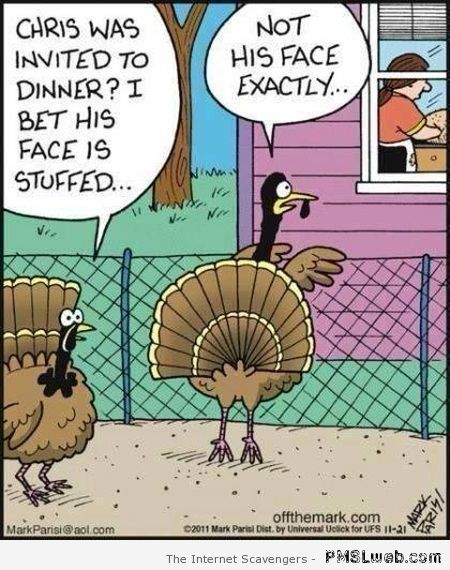 Funny Thanksgiving cartoon at PMSLweb.com