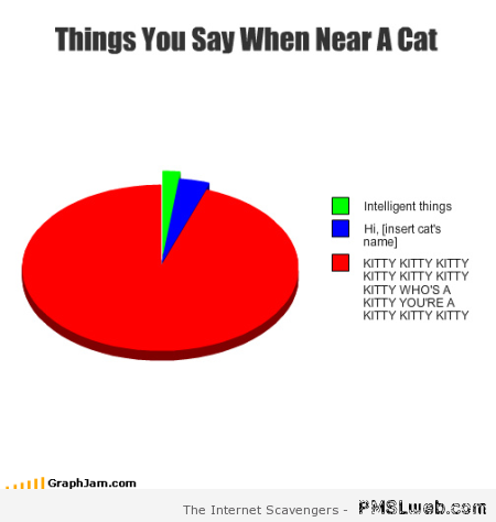 Things you say when near a cat graph at PMSLweb.com