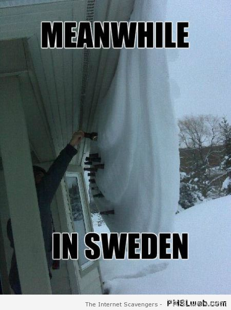 Meanwhile in Sweden meme at PMSLweb.com