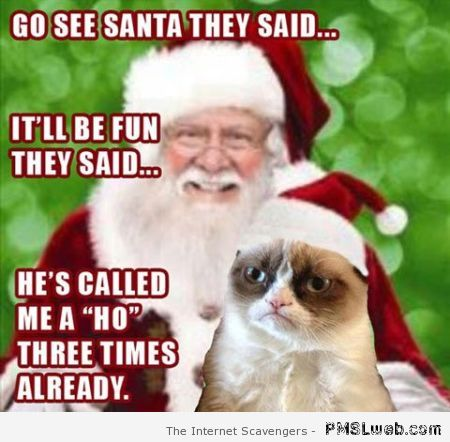 Funny grumpy cat and Santa Claus at PMSLweb.com