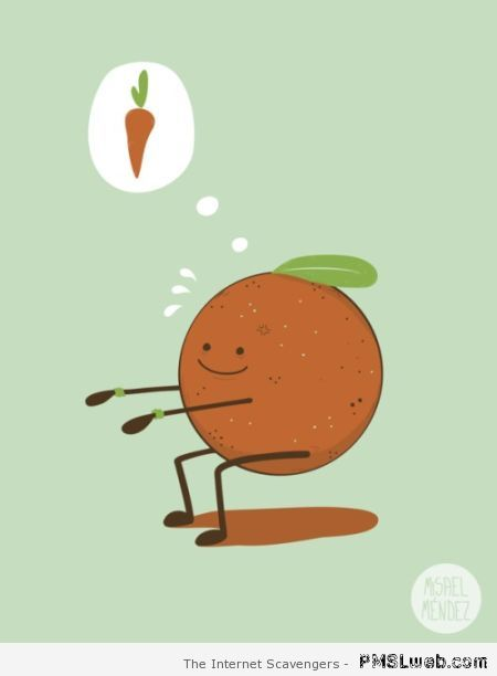 Orange on a diet humor at PMSLweb.com