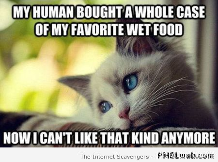 Funny cat food meme at PMSLweb.com