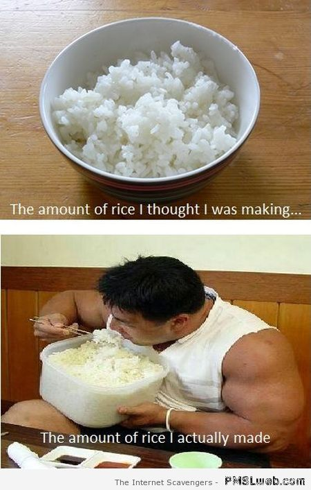 Funny the amount of rice I thought I was making at PMSLweb.com