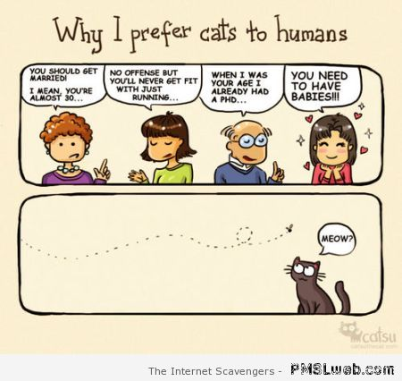 Why I prefer cats to humans at PMSLweb.com
