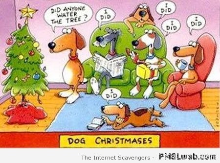 Dog Christmases cartoon at PMSLweb.com
