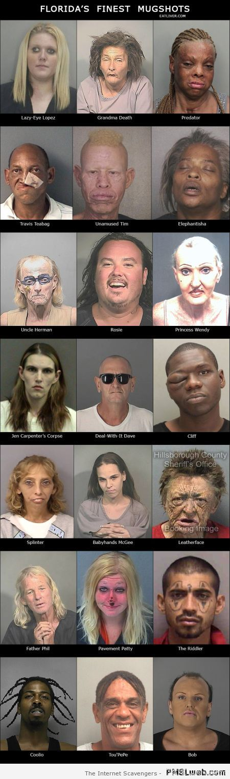 Funny Florida's finest mugshots at PMSLweb.com