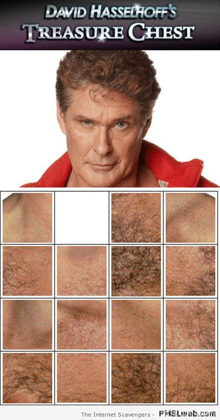 Hasselhoff's treasure chest at PMSLweb.com