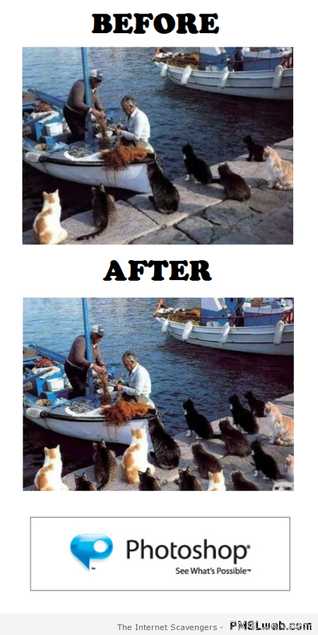 Before and after photoshop humor at PMSLweb.com