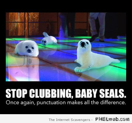 Baby seals punctuation fail at PMSLweb.com