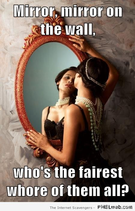 Mirror on the wall meme at PMSLweb.com