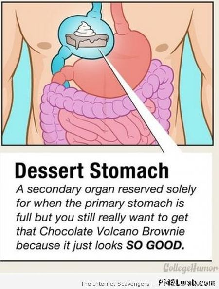 Funny dessert stomach at PMSLweb.com