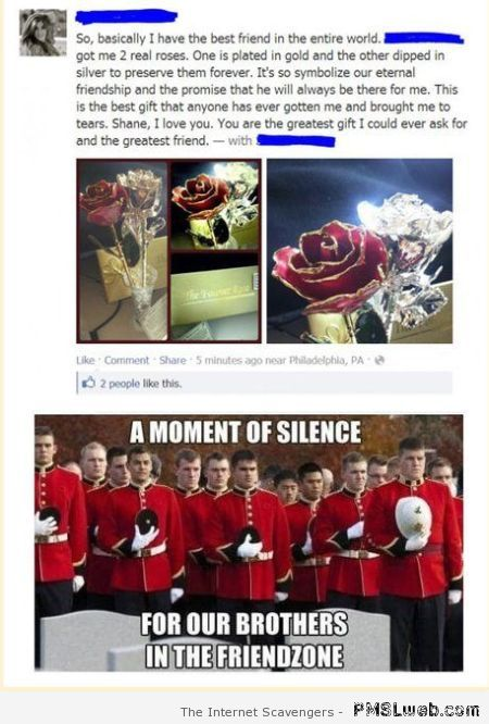 Friendzoned on Facebook at PMSLweb.com