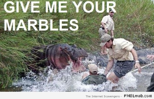 Give me your marbles meme at PMSLweb.com