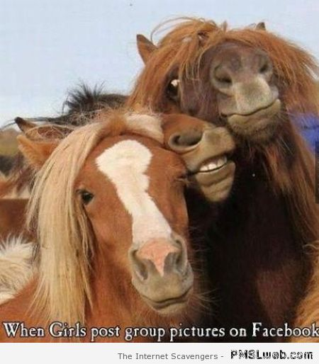 When girls post group pictures on Facebook humor at PMSLweb.com