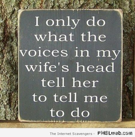 The voices in my wife's head humor at PMSLweb.com