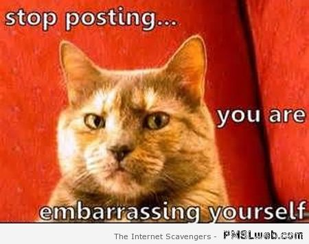 Stop posting you are embarrassing yourself meme at PMSLweb.com