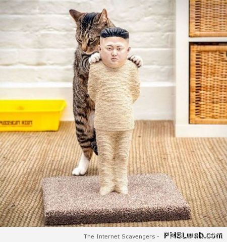 Kim Jong Un scratching post at PMSLweb.com
