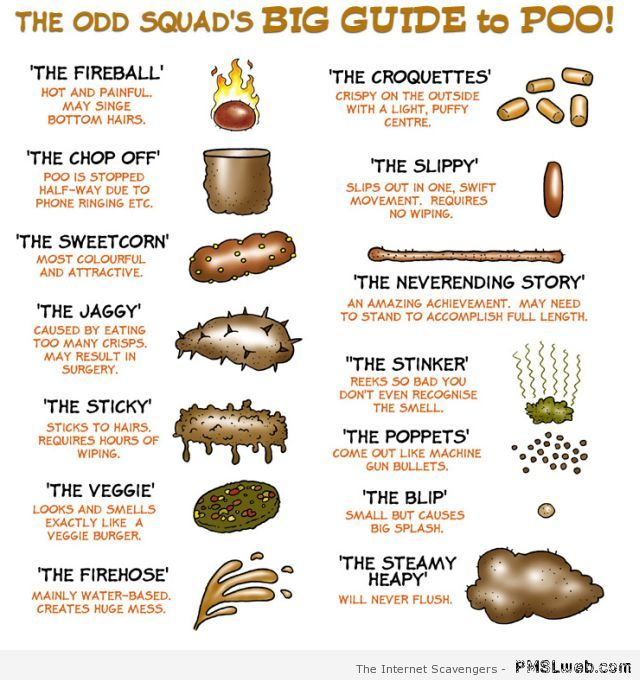Funny big guide to poo at PMSLweb.com