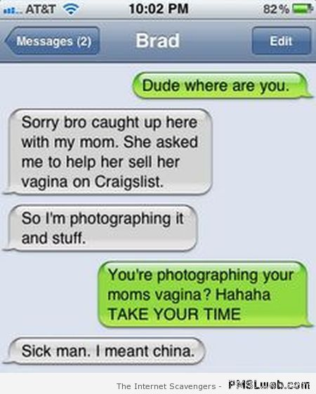 Your mom's vagina on Craigslist funny iPhone at PMSLweb.com