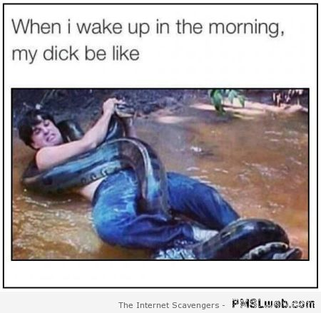 When I wake up in the morning penis humor at PMSLweb.com
