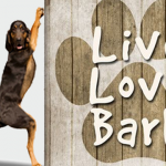 Live love and bark – Funny dogs at PMSLweb.com
