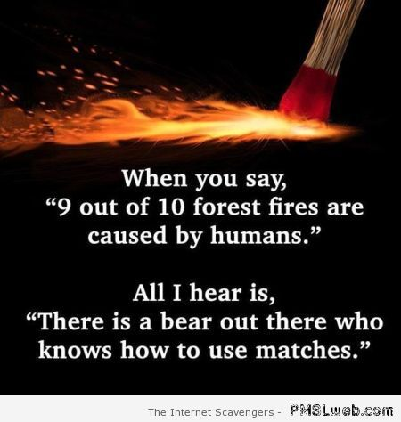 Nine out of ten forest fires are caused by humans humor at PMSLweb.com