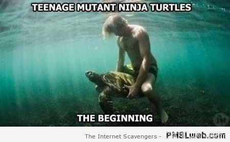 Teenage mutant ninja turtles meme at PMSLweb.com