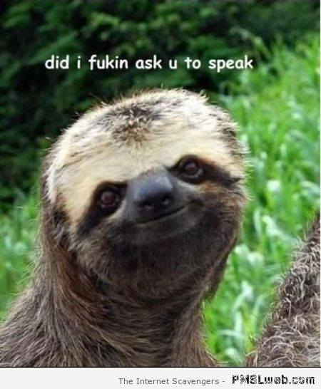 Did I ask you to speak sarcastic sloth at PMSLweb.com