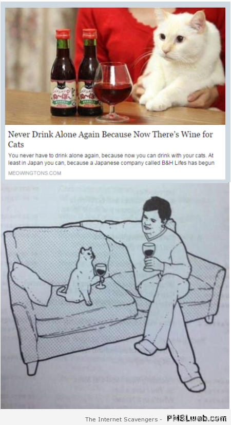 Wine for cats humor at PMSLweb.com
