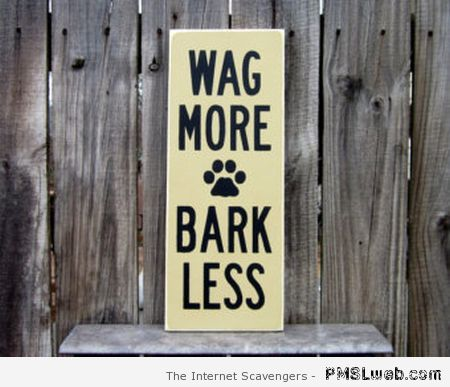 Wag more bark less at PMSLweb.com