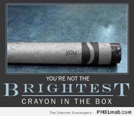 You're not the brightest crayon in the box humor at PMSLweb.com
