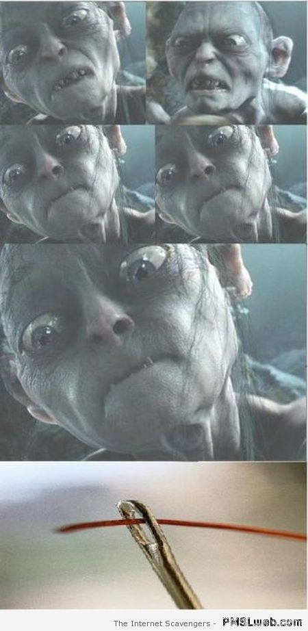 Funny Gollum and the needle at PMSLweb.com