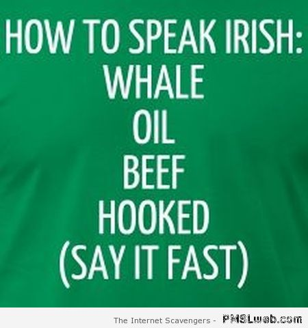 Funny how to speak Irish at PMSLweb.com