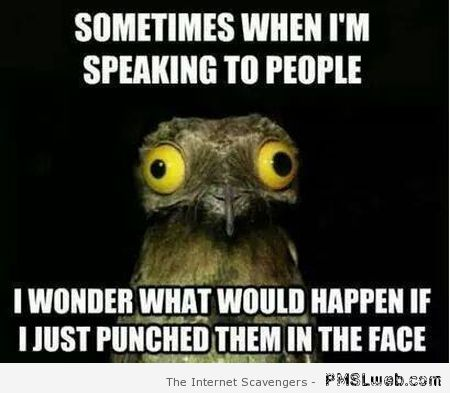 Sometimes when I'm speaking to people meme at PMSLweb.com