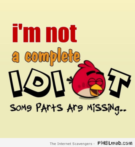 I'm not a complete idiot humor at PMSLweb.com