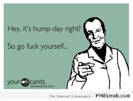 Sarcastic hump day ecard – Hump day playtime at PMSLweb.com