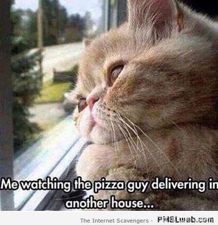 Watching the pizza guy deliver at another house meme – LOL pictures at PMSLweb.com