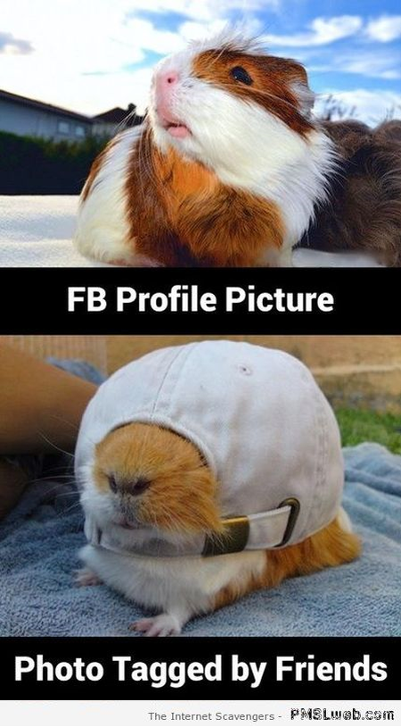 Funny FB profile picture versus picture tagged by friends at PMSLweb.com