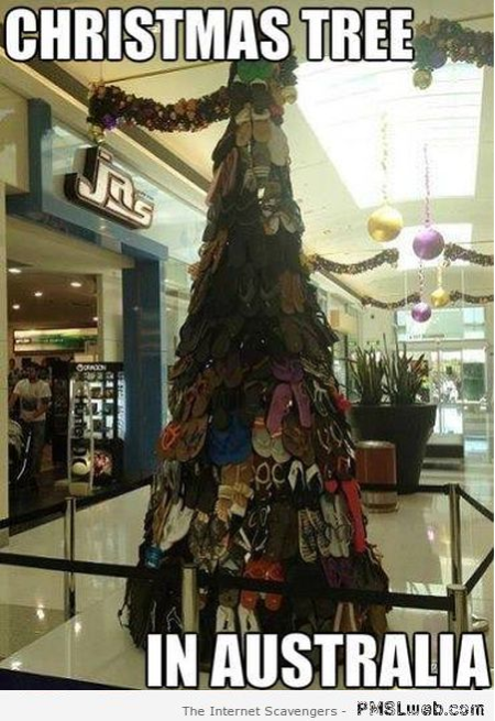 Christmas tree in Australia meme at PMSLweb.com