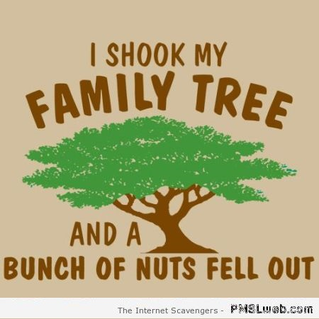 I shook my family tree funny quote at PMSLweb.com