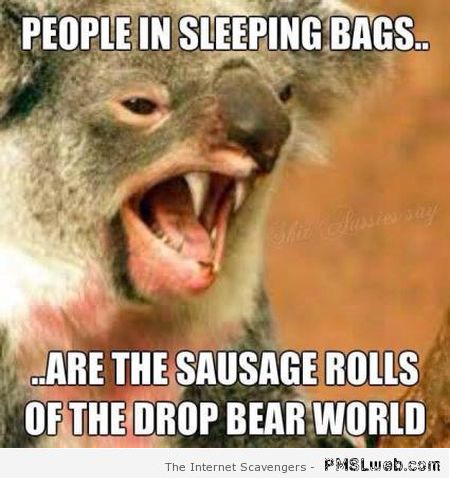 Funny drop bear meme at PMSLweb.com