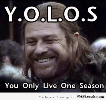 Y.O.L.O.S game of Thrones meme at PMSLweb.com
