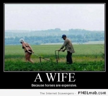 A wife because horses are expensive demotivational at PMSLweb.com