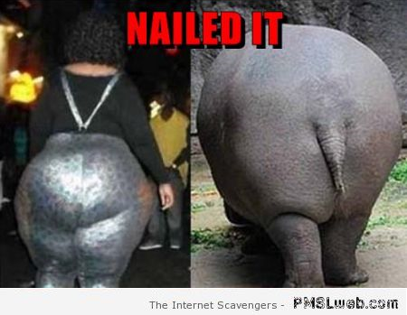 Hippo ass nailed it at PMSLweb.com