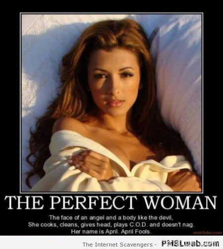 Funny the perfect woman at PMSLweb.com