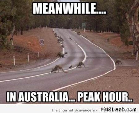 Peak hour in Australia meme at PMSLweb.com