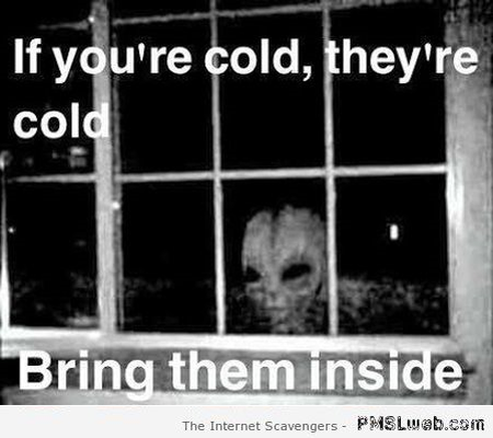 Funny alien if you're cold they're cold meme at PMSLweb.com